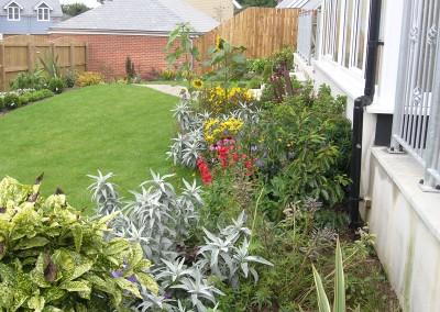 Planting – Falmouth